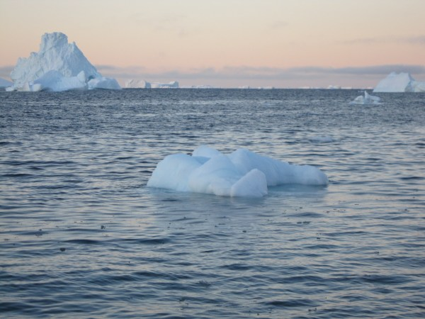 Icebergs Upernavik. Photograph by Nancy Campbell