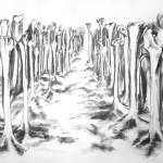 Bone Forest, Jo Dacombe