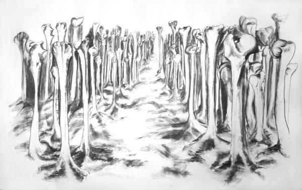 Bones: Bone Forest, Jo Dacombe