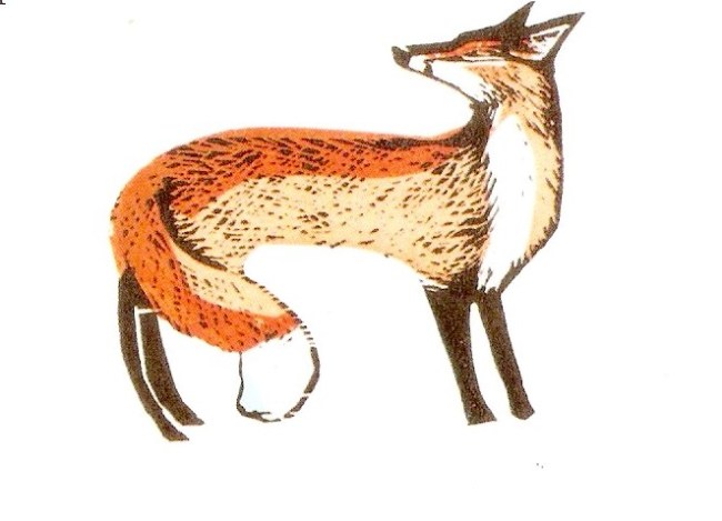 Showing a vixen in winter