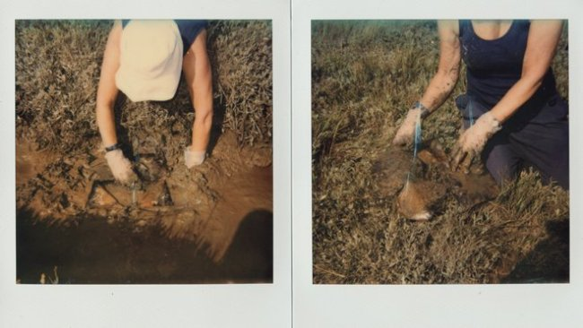 Unseen - showing the process of burying photographic prints to reveal slow changes.