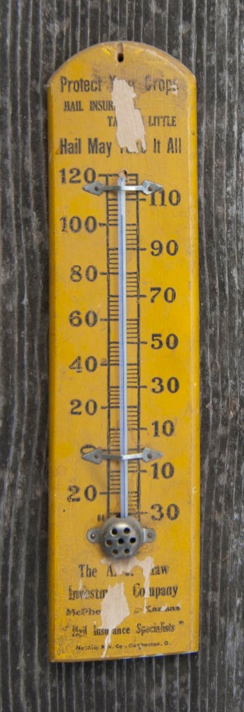 thermometer-insurance-dsc_0005