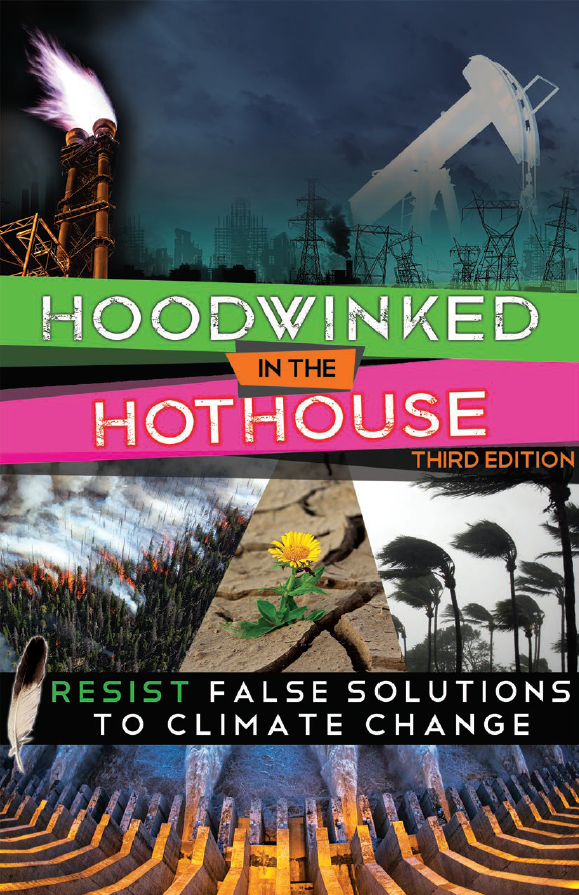 Cover image of Hoodwinked in the Hothouse