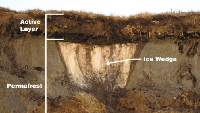 Melting ice: the alarming cause for ancient viruses' revival