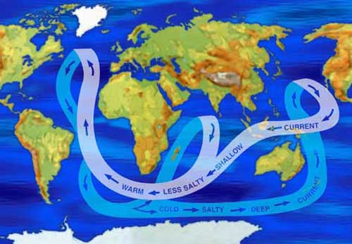 NASA Climate Kids    What is happening in the ocean  World map showing major ocean currents by salinity levels  Warm  shallow  water is less