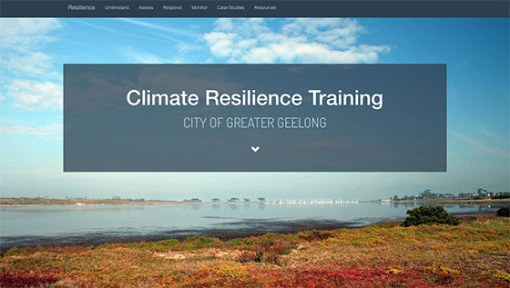 CoGG-resilience-training560