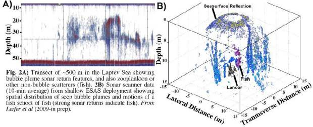 Interpretation of acoustical data recorded with deployed multibeamsonar allowed moderate quantification of bottom fluxes as high as 44g/m2/d (Leifer et al., in preparation). Prorating these numbers to the areas of3hot spots (210×10km2) adds 3.5Gt to annual methane release from theESAS. This is enough to trigger abrupt climate change (Archer, 2005).