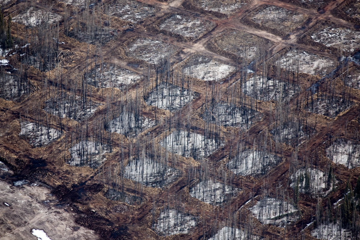 Checkerboard clearing of the overburden at Syncrude Aurora North mine site. Alberta, Canada.