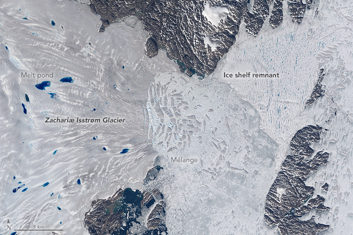 Zachariæ Isstrøm glacier broke loose from a stable position and entered a phase of accelerated retreat 2015