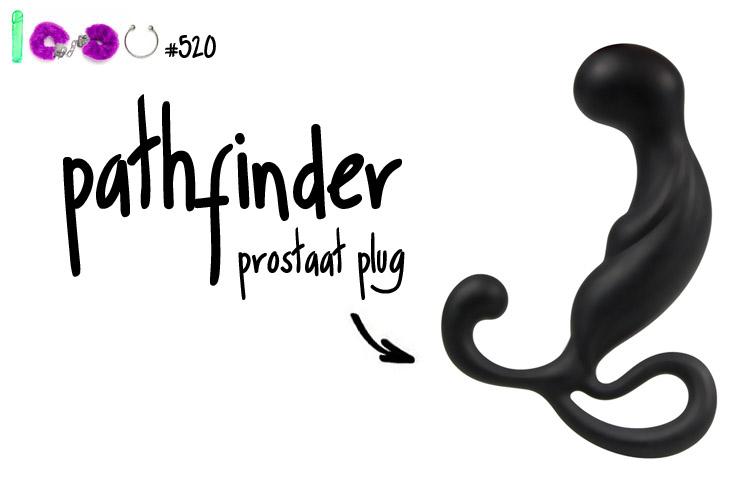 Dit is een afbeelding van pathfinder prostaat plug