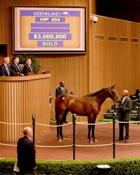 Photo: Keeneland Photo Hip 454, a half brother to champion Beholder and grade I-winning sire Into Mischief, brought $3 million Sept. 14