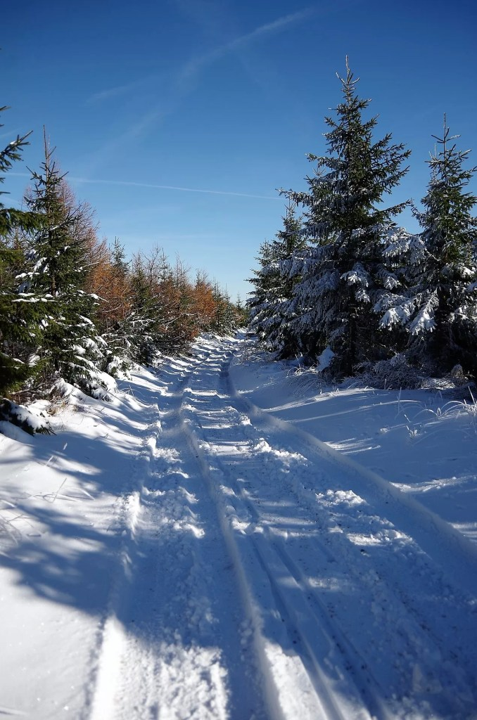 Zimowe weZimowe wejście na Skrzycznejście na Skrzyczne