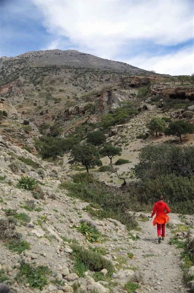 Szlak na klif Agios Iaonis