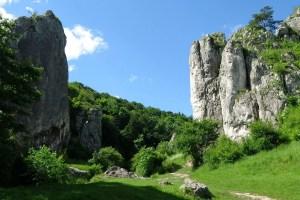 Dolina Bloechowicka wiosną
