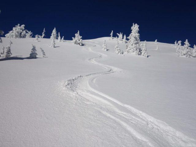 Snow Peak Tracks
