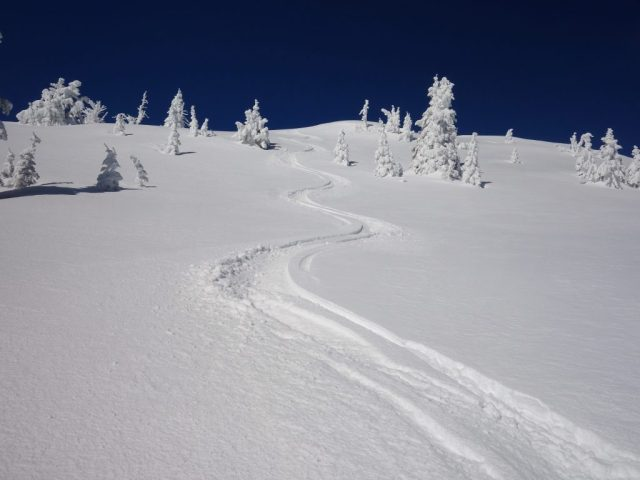 Snow Peak Tracks