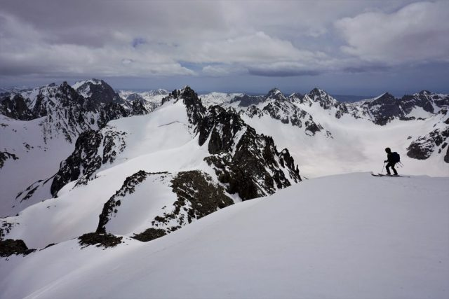 Skiing Gannet