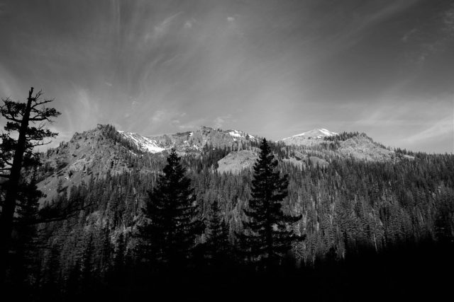 Teanaway Forest