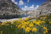Palisade Lakes