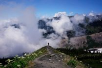 Jacob walks into the sea of clouds and wildflowers on the Hogsback.