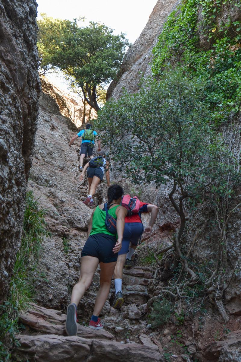 Travessa Agulles i Frares Encantats, Montserrat 5