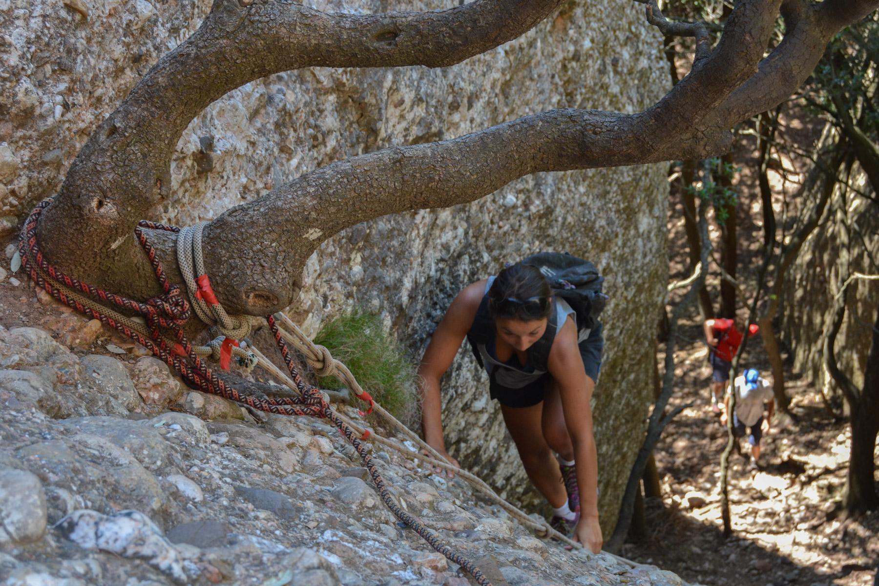 Travessa Agulles i Frares Encantats, Montserrat 9