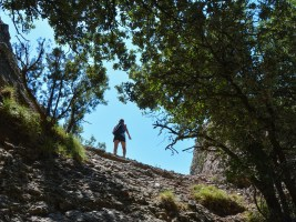 Travessa Agulles, Montserrat 13