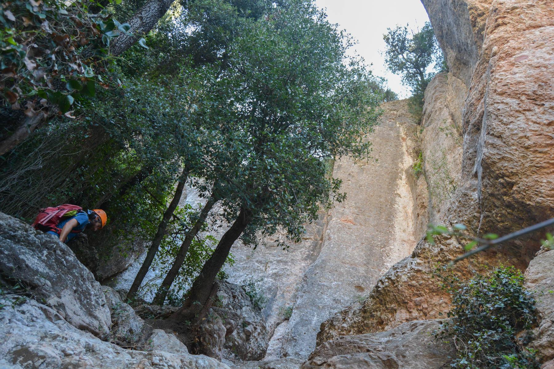 Cami de les Dames, Montserrat 6