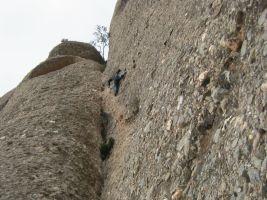 Montpart a la Miranda de las Boïgues, Montserrat, Espagne 13