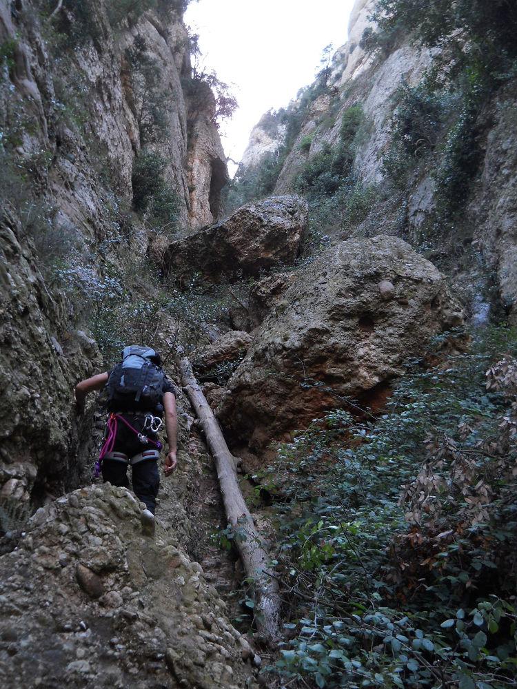 Torrent de Vallmala, Montserrat 19