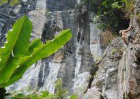 Butterfly Valley, Sport Climbing, Cat Ba Island, Vietnam 20
