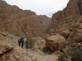 La Princesse a la Dalle, Wadi Naqab, Émirats 51