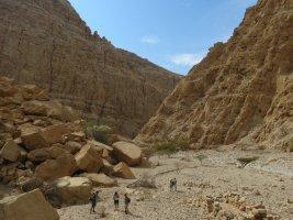 La Princesse a la Dalle, Wadi Naqab, Émirats 52