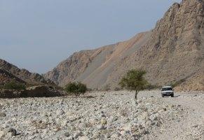 La Princesse a la Dalle, Wadi Naqab, Émirats 39