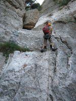 Drac Gos a l'agulle de Can Jorba, Montserrat, Espagne 1