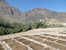 W8, Bilad Seet à Sharaf Al Alamein, Wadi Bani Awf, Oman 7