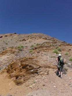 11. sentier pour rejoindre le sommet