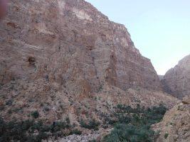 La Snifonie, Wadi Tiwi, Oman 4