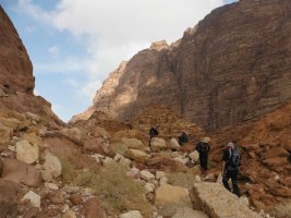Wadi Tibn, Wadi Sabra, Petra, Jordanie 17