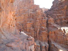 Rakabat Canyon, Jebel Um Ishrin, Wadi Rum, Jordanie 21
