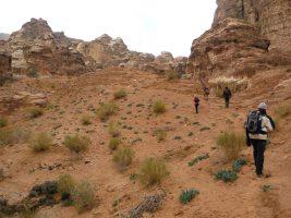 Petra via Wadi Muaysra As Sharkiyya, Petra, Jordanie 25