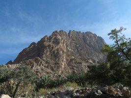 Les miettes du gâteau, Jebel Assaït, Ibri, Oman 5