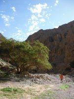 La Princesse a la Dalle, Wadi Naqab, Émirats 24