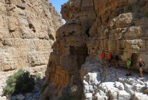 Leopard Canyon, Wadi Qada'a, Ras Al Khaimah, Émirats Arabes Unis 29