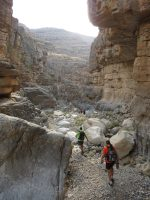 Leopard Canyon, Wadi Qada'a, Ras Al Khaimah, Émirats Arabes Unis 47