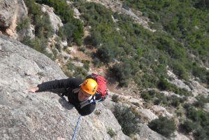 L'avi Trepador a la Codolosa, Montserrat, Espagne 11