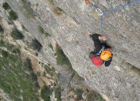 L'avi Trepador a la Codolosa, Montserrat, Espagne 15