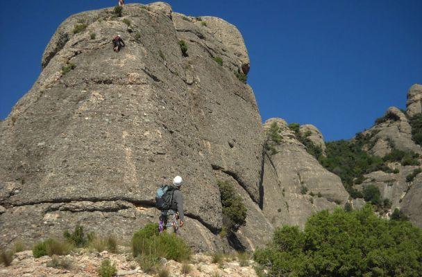 Aresta Brucs a Can Jorba, Montserrat, Espagne 2