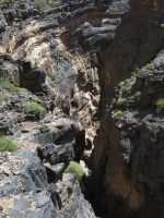 Snake canyon, Jebel Akhdar 35