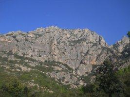 L'avi Trepador a la Codolosa, Montserrat, Espagne 4
